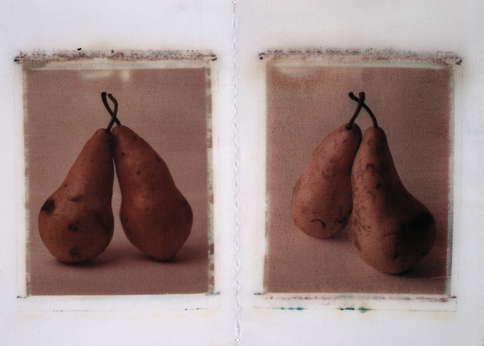 pears on clothes